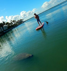 fish fishing family used s.u.p. sup stand up paddleboard paddle board flat water yoga surfboard surf board surfshop surf shop stuart jensen beach hutchinson island fl florida 34996