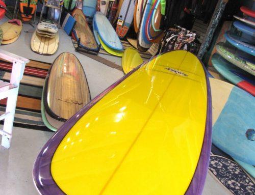 9′-6″ Savage Longboard Surfboard